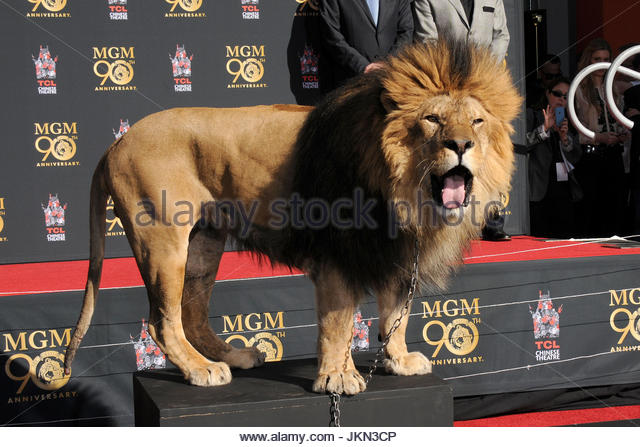 The MGM lion, motivation